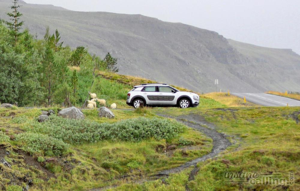 Thrifty Car Rental Iceland Insurance